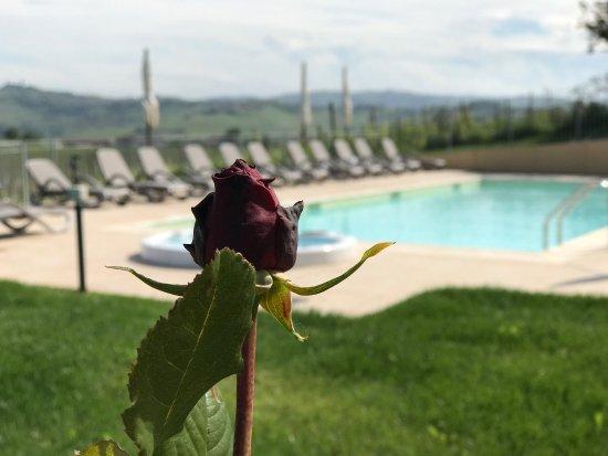 Agliano Terme, Italië: Naturalmente Wine Resort