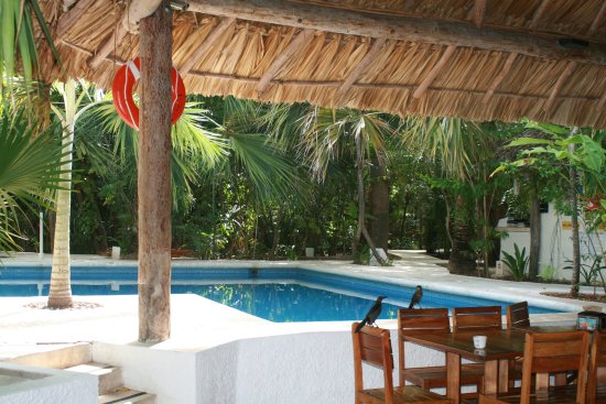 Sotavento Hotel & Yacht Club-bild