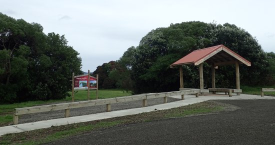 Opotiki, Nowa Zelandia: 800m past track helter at road end past Ohiwa Beach Holiday Park, a good place to park with toil