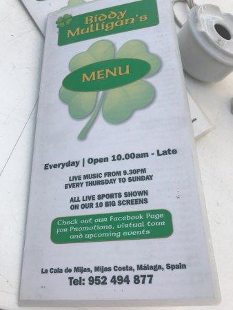 Biddy Mulligan's Irish Pub: Menú del pranzo