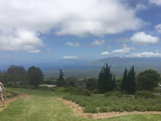 Кула, Гавайи: photo0.jpg