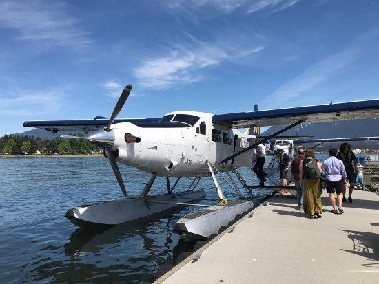 Harbour Air Seaplanes: photo2.jpg