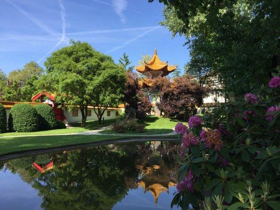 jardin chinois bild von chinagarten zurich z rich