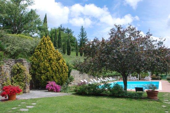 Castelfranco di Sopra, Italy: photo1.jpg