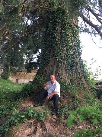 Soubrebost, Francia: We hebben het geweldig gehad bij Andrew en Bernie. Ze zijn zo gastvrij en vriendelijk dat we ons