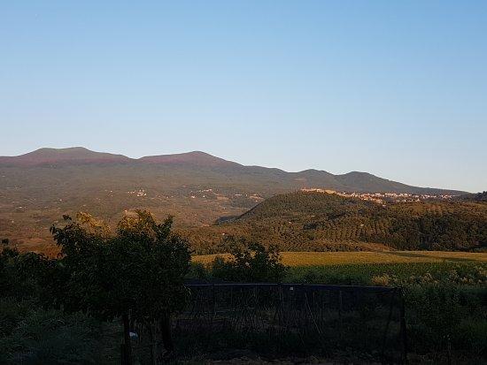 Montenero d'Orcia, Italia: Trattoria in Campagna