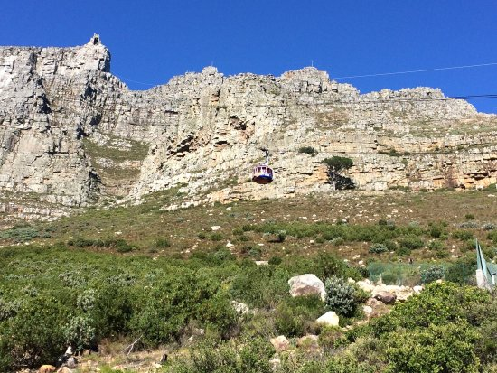 Table Mountain Aerial Cableway: photo1.jpg