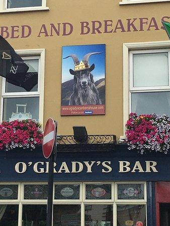 Killorglin, Irlanda: He is indeed the king!