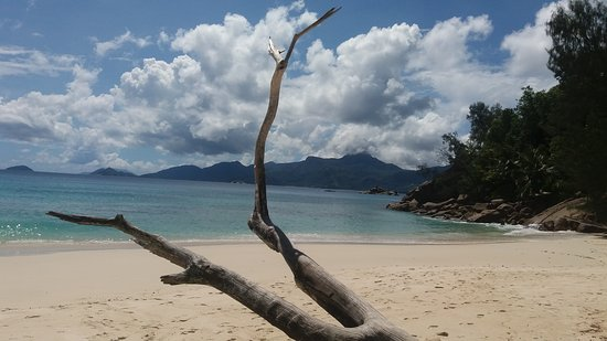 Остров Маэ, Сейшельские острова: 20170427_132335_large.jpg