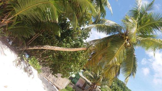 Mahé, Seychellene: 20170427_132108_large.jpg