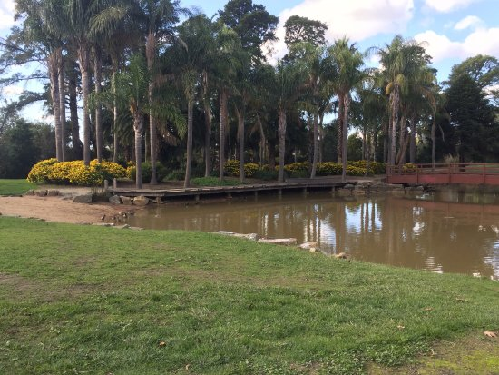Ringwood, Australia: photo0.jpg