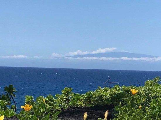 Halii Kai Resort at Waikoloa Beach: photo2.jpg