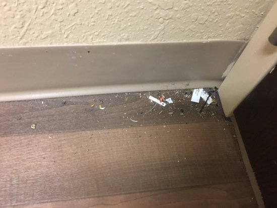 Extended Stay America - Minneapolis - Bloomington: The floor when I checked in!