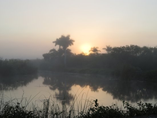 Royal Palm Visitor Center: Siunrise