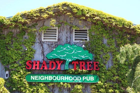 Shady Tree Pub: Street Sign