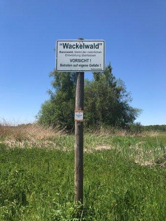 Wackelwald