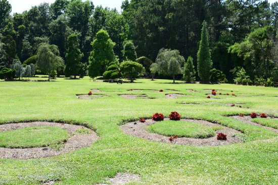 Bishopville, SC: The field where the words - love, peace, goodwill - are carved into the ground.