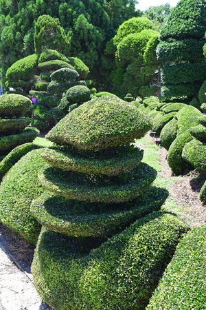 Bishopville, SC: Some of the topiary