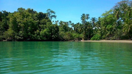 Panama Dive Center: photo0.jpg