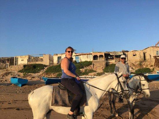 Horses Agadir Ranch Acienda