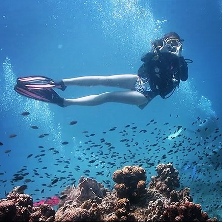 Phoenix Divers: photo0.jpg