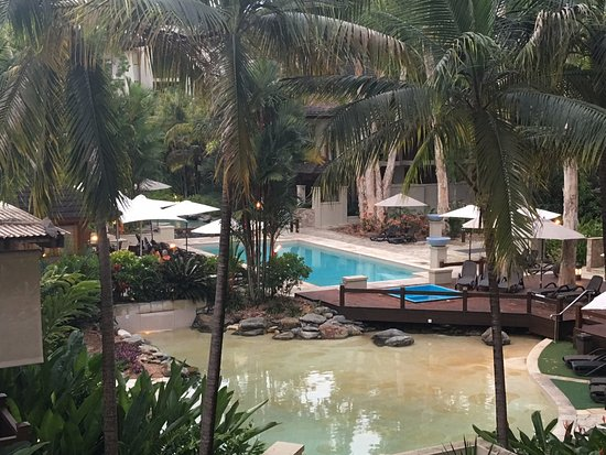 Pullman Palm Cove Sea Temple Resort & Spa: Pool view from the apartent