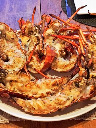 Sandy Hill Bay, Anguila: Lobster Dinner