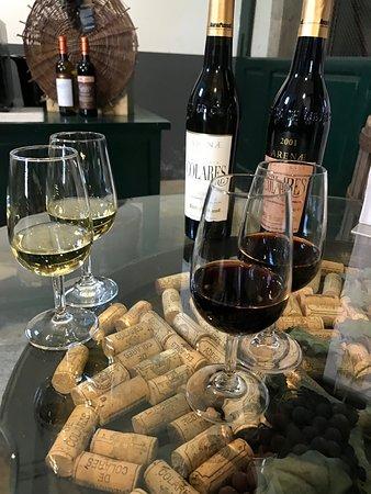 Colares, Portekiz: Wine Tasting