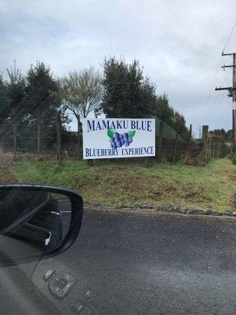 Mamaku, Новая Зеландия: photo6.jpg