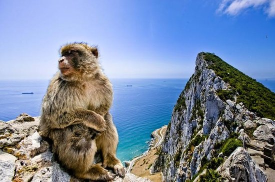 Gibraltar and Bolonia Day Trip from...