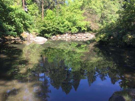 Lithia Park : photo1.jpg