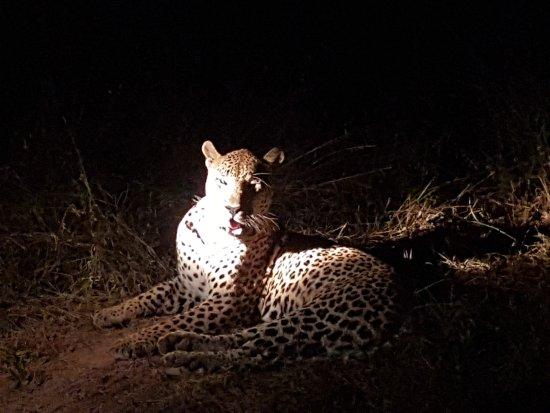 Umkumbe Safari Lodge: 20170419_182158_large.jpg