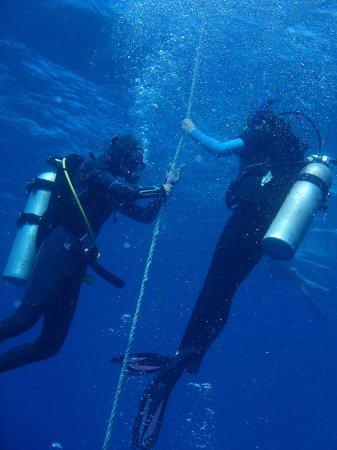 Scuba Fun Dive Center: Descending down the dive line clearing ears