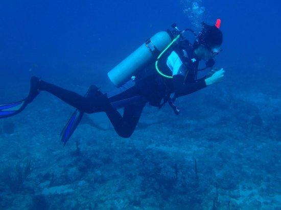 Scuba Fun Dive Center: At 60 feet