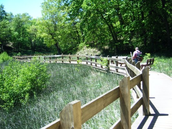 Chesterton, IN: The Boardwalk to the Beach from the Campground Trail