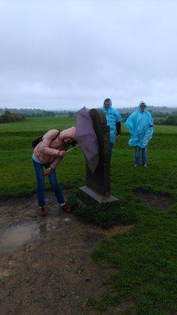 Gray Line Dublin : Rain on the Hill...
