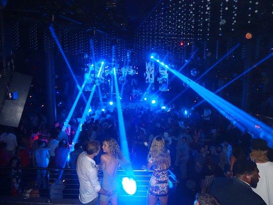 Delano South Beach Hotel Nightclub Story