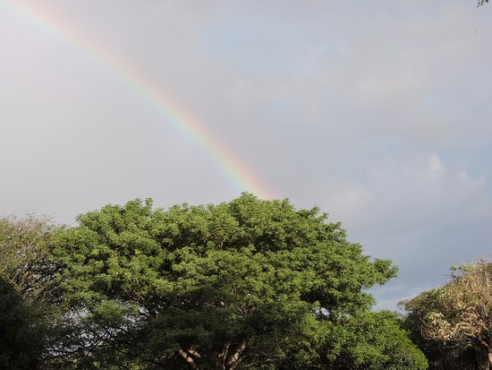Falaza Game Park & Spa: At last the rain has come!