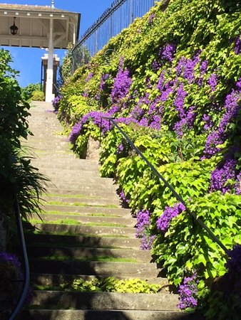 Hôtel Villa Reine Hortense : Stairs from the street leading down to the hotel entrance