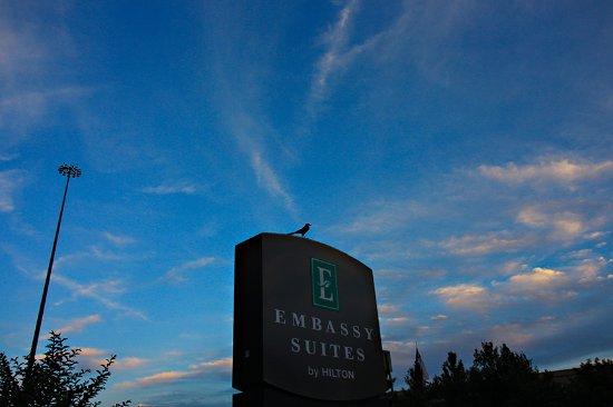 Embassy Suites by Hilton Houston - Energy Corridor Photo