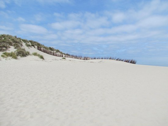 Dunes of Texel National Park