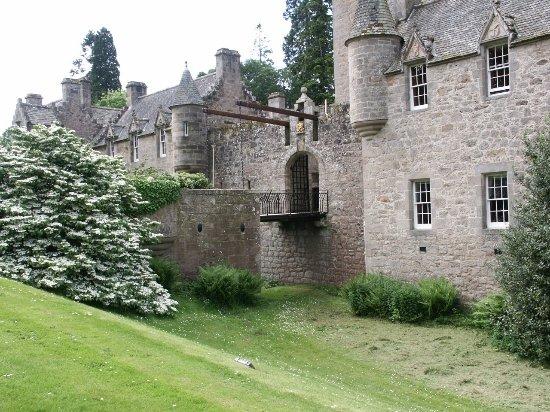 Nairn, UK: Here is the magnificent viburnum on the drawbridge at Cawdor Castle