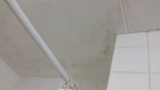 Umidità in bagno - Picture of Hotel Mystays Nishi Shinjuku ...