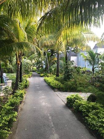 Paradis Beachcomber Golf Resort & Spa: photo3.jpg