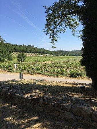 Flassans-sur-Issole, France : photo0.jpg