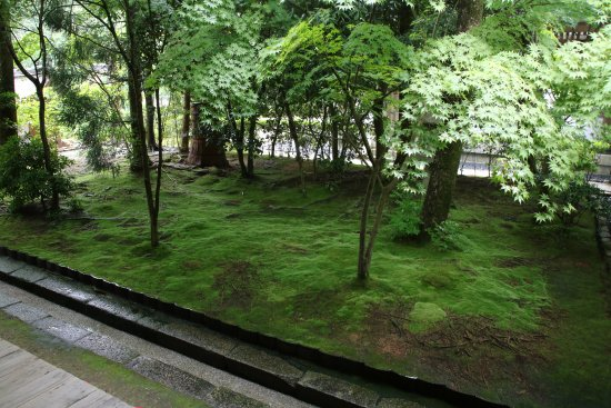 ry an ji temple jardin zen photo de ryoanji temple kyoto tripadvisor. Black Bedroom Furniture Sets. Home Design Ideas