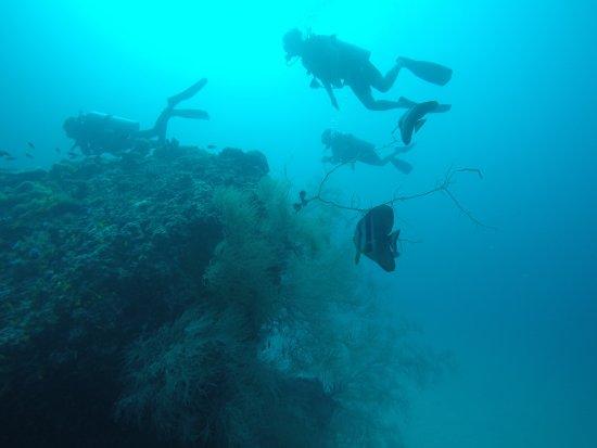 Maafushi Island: deep blue
