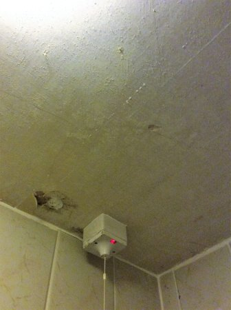 Torthorwald, UK: Fan very dirty and ceiling a mess