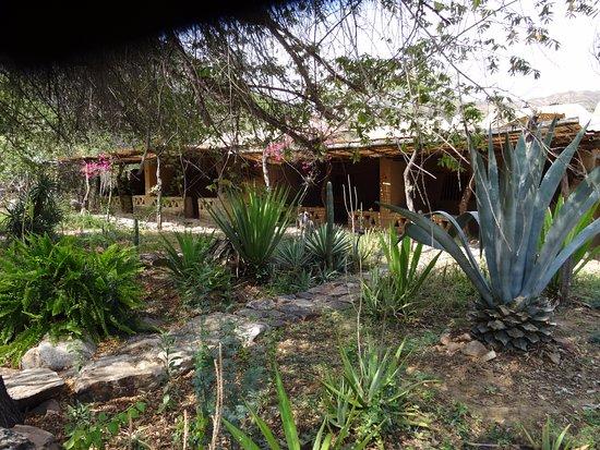 Reserva Ecologica Chaparri: Zimmer von aussen