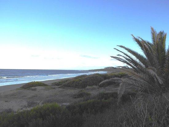 Hotel Parque Oceanico: Beachfront